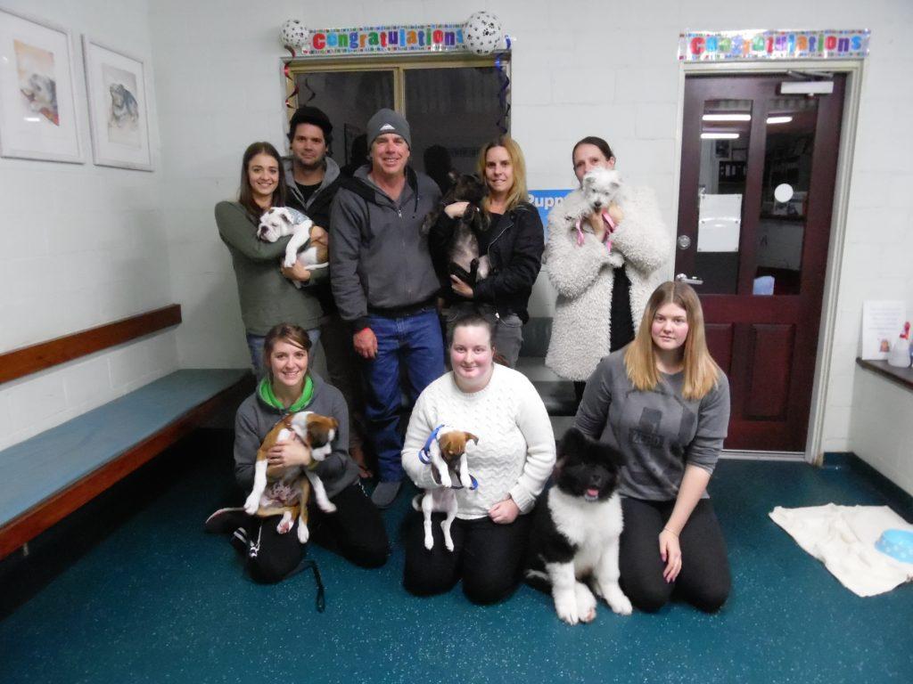 Puppy Class July 2016